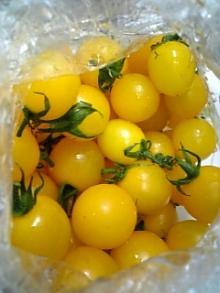 アトリエアンのブログ-黄色いトマト